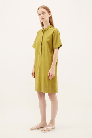 Addel Shirtdress
