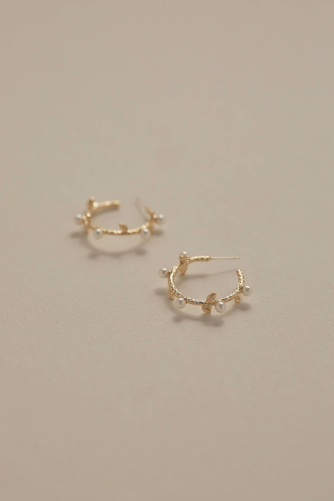 Wayn Hoop Earrings