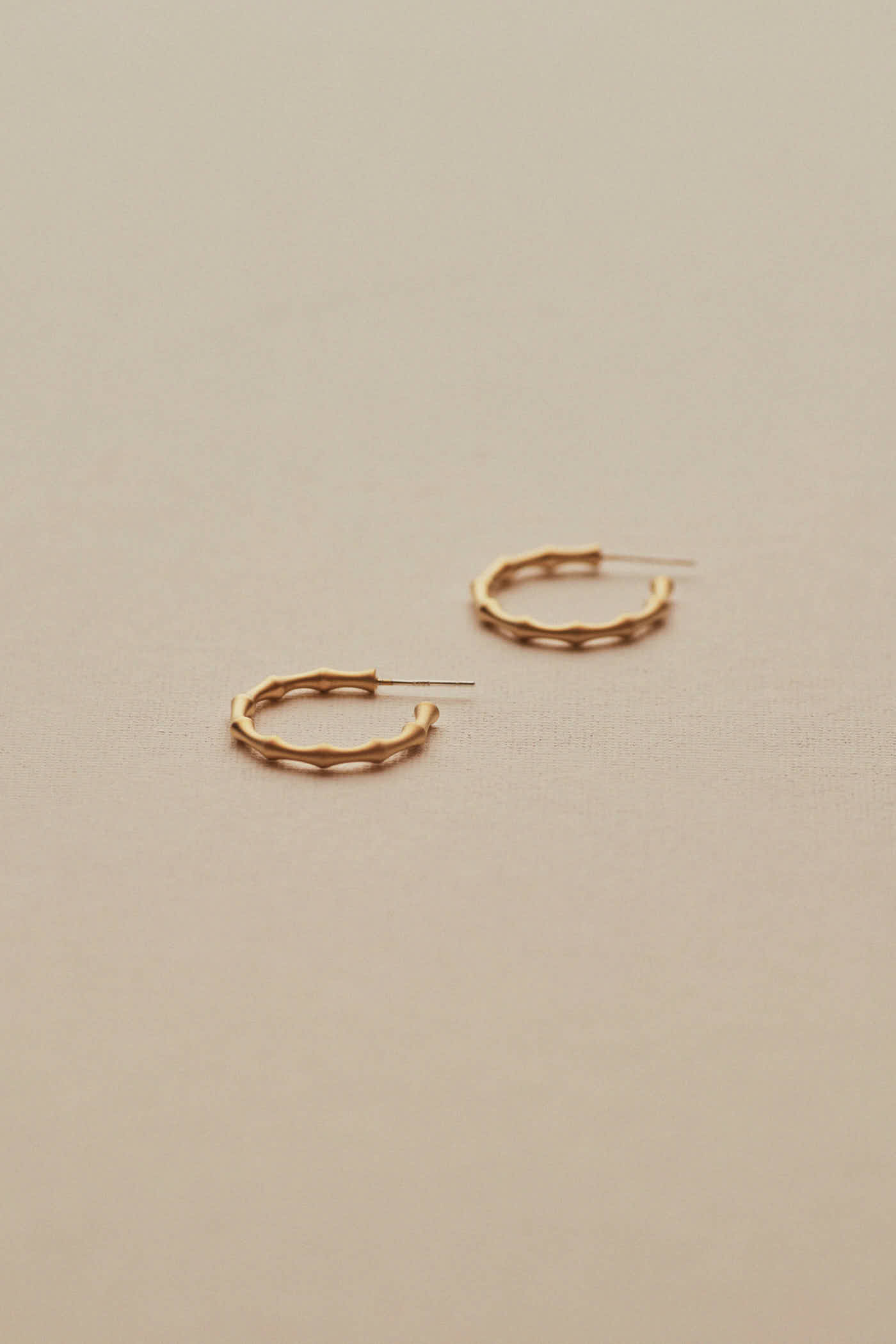 Hansen Hoop Earrings